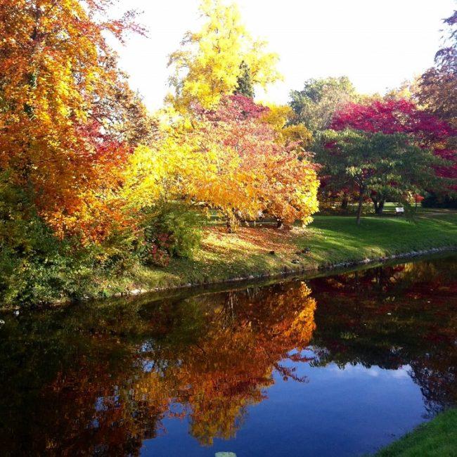 Lichtentaler Allee Herbst