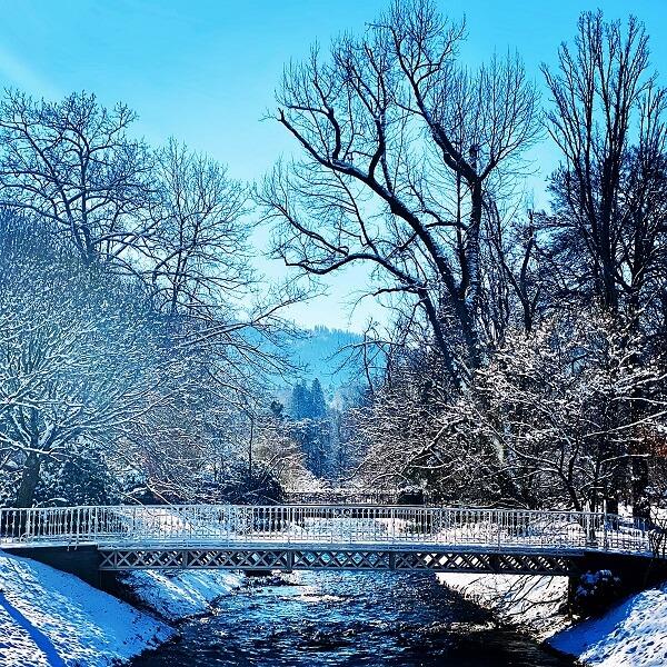 Lichtentaler Allee Winter